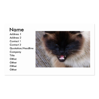 Siamese Persian Kitty Cat Business Card