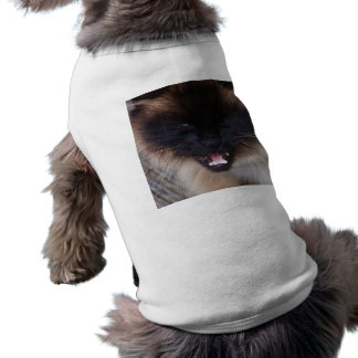 Siamese Persian Kitty Cat Pet Clothing