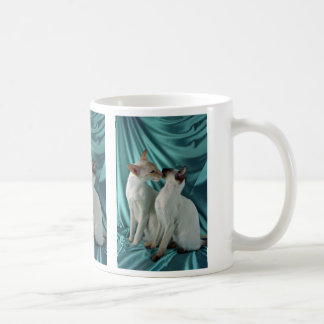 Siamese, red point & seal point classic white coffee mug