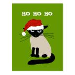 Siamese Santa Clause - Funny Cat Christmas Postcard