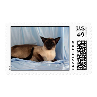 Siamese, seal point postage stamp