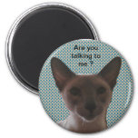 Siamese Silly Cat 2 Inch Round Magnet