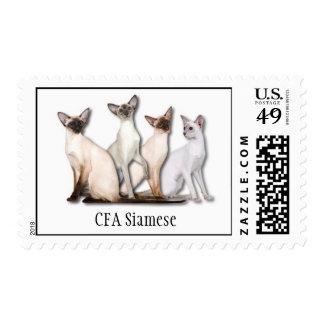 Siamese Stamp 1