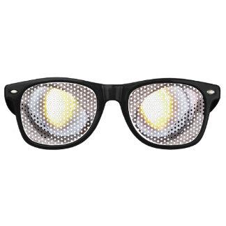 Siamese Stare Glasses