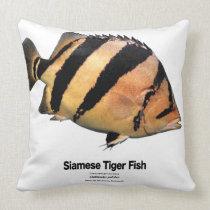 Siamese Tiger Fish Throw Pillow