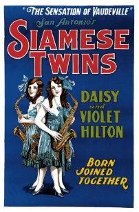 Vaudeville posters photo prints zazzle siamese twins daisy and violet hilton poster maxwellsz