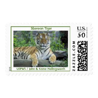 Siberean Tiger Postage