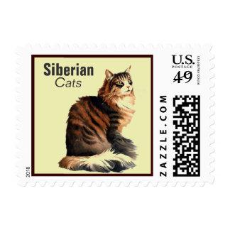 Siberian Cat Breed Postage Stamp