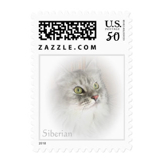 Siberian Cat Breed Postage Stamp