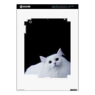 Siberian Cat Decal For iPad 3