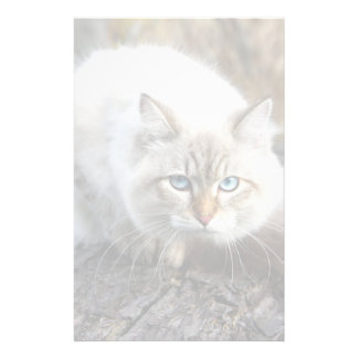 Siberian Cat In A Autumn Forest Stationery Design