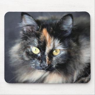 Siberian Cat Mouse Pad