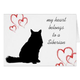 Siberian Cat Note Cards