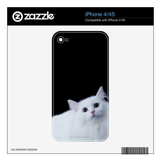 Siberian Cat Skin For iPhone 4