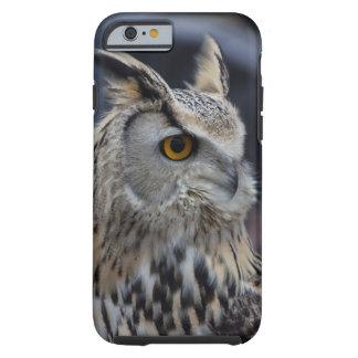 Siberian Eagle Owl Tough iPhone 6 Case