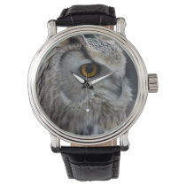 Siberian Eagle Owl Watch