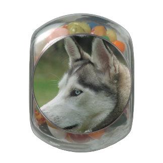 Siberian Huskey Glass Jars
