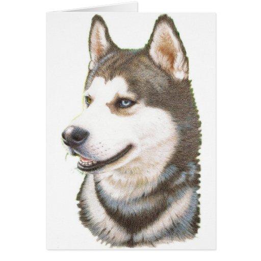 Siberian Huskey Dog Card
