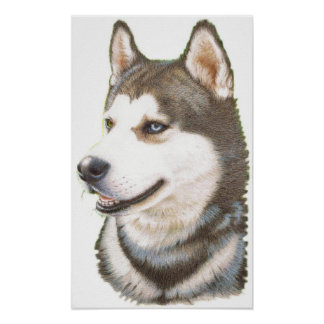 Siberian Huskey Dog Print