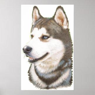 Siberian Huskey Dog Print