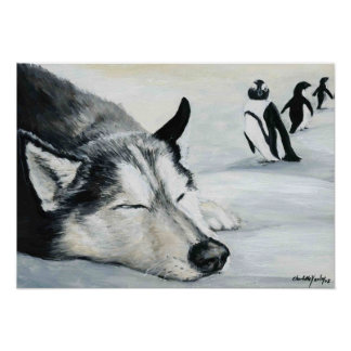 """Siberian Huskey's Penquin Dream"" Dog Art Poster"