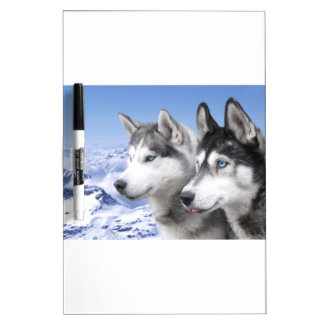 Siberian Huskies Dry-Erase Board