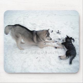 Siberian Husky Alfombrillas De Ratones