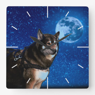 Siberian husky and the Blue Moon Square Wall Clock