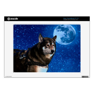 Siberian husky and the Blue Moon Acer Chromebook Skin