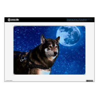 Siberian husky and the Blue Moon Samsung Chromebook Decals