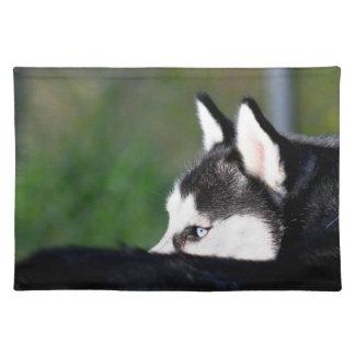 Siberian Husky Cloth Placemat