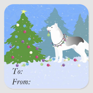 Siberian Husky Decorating Christmas Tree -Forest Square Sticker