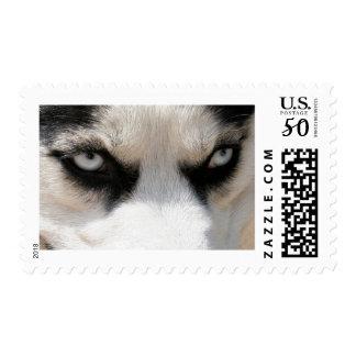 Siberian Husky Demon 4 Postage