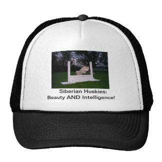 Siberian Husky Dog Agility Trucker Hat