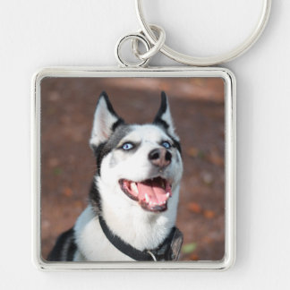Siberian Husky dog blue eyes Silver-Colored Square Keychain