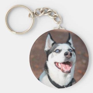 Siberian Husky dog blue eyes Basic Round Button Keychain