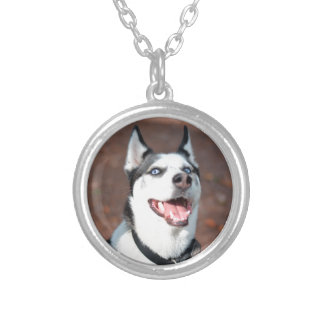 Siberian Husky dog blue eyes Silver Plated Necklace