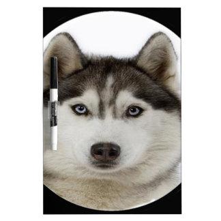 """Siberian Husky dog"" Dry-Erase Board"