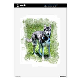 Siberian Husky Dog-lover's Pet Gift Series Skin For iPad 2