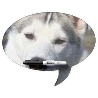 Siberian Husky Dog Photo Dry Erase Whiteboards