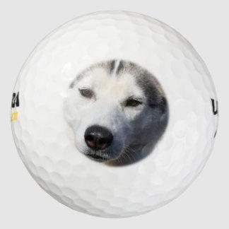 Siberian Husky Dog Photo Pack Of Golf Balls