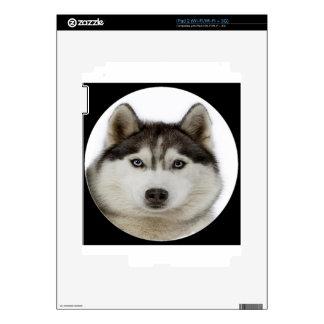 """Siberian Husky dog"" Decal For The iPad 2"