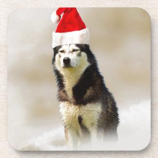 Siberian Husky Dog with Santa Hat in Snow Beverage Coaster