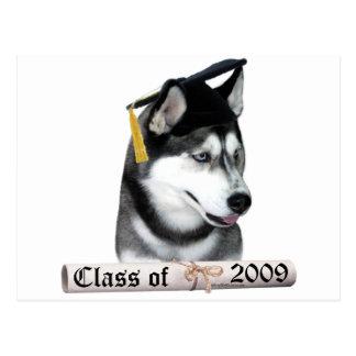 Siberian Husky Grad 09 Postcard