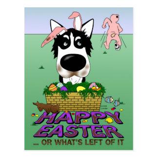 Siberian Husky Happy Easter Postcard