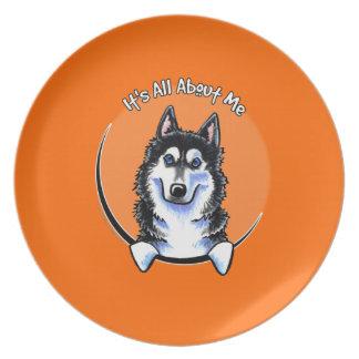 Siberian Husky IAAM Plate