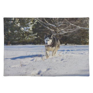 Siberian Husky In The Snow Cloth Placemat