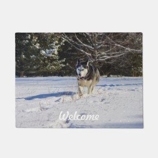 Siberian Husky In The Snow Doormat
