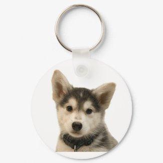Siberian Husky Keychain keychain