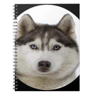 """Siberian Husky"" Spiral Notebooks"